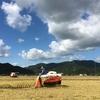 稲を刈りました(2017年9月2日)