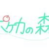 ポケカの森 参加者リスト