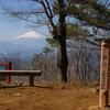 奥多摩(三頭山)の花々(2)  2009.4.10      2019.5.11