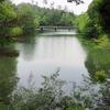 乢田池(岡山県津山)