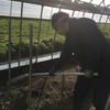 アスパラ農業研修 ~ 収穫準備 ~