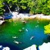 ドブロブニクからロクルム島へはフェリーで10分!自然と野生動物がいっぱい!