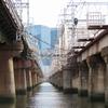 大阪)十三から淀川河川敷へ。野鳥、ツグミ、ジョウビタキ、ハッカチョウ。阪急電車淀川橋梁。