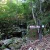 後山のハイク(その1)後山キャンプ場~船木山登山コース