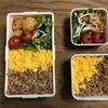 【常備菜活用】新玉ねぎサラダと2色丼弁当