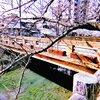 水の町・大垣に建つ城と 謎多き関ケ原ウォーランドへ……|岐阜県南部旅行(4)