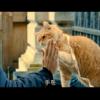 映画「ボブという名の猫~幸せのハイタッチ~」を観ました