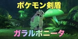 【ポケモン剣盾】ガラルポニータが確認されたので詳細まとめ