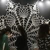 「唄う蜘蛛の巣」