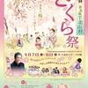 咲き誇る約440本のソメイヨシノを満喫する2日間「第35回さくら祭り」in 下北山スポーツ公園