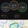 皇居30km走 - いまいちなデキ