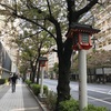 東京3日目②すぐできることを行動すること。