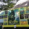 上野の森美術館~ゴッホ展⸜(* ॑꒳ ॑*  )⸝⋆*