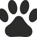 獣医学生のブログ