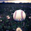 「腹立つわぁ~」感情を逆なでする少年野球の応援4選とまぁまぁいい応援1つを紹介