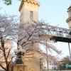 東洋のパナマ運河「松重閘門」と桜開花
