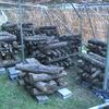 榾木の積み替え