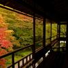 京都洛北写真撮影反省会