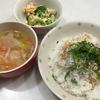 しらす丼と豚汁・サラダ