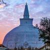 仏教(ブッダの教え)は遺骨を大事にするのか