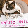 【週末英語#233】英語のSaluteは「敬礼」、イタリア語のSaluteは「乾杯」