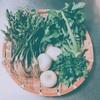 四草と鶏の中華粥