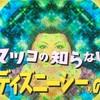 2019年4月9日マツコの知らない世界『東京ディズニーシーの世界』・前編