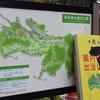 奥卯辰山公園の十月桜・・