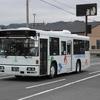 鹿児島交通(元西武バス) 1815号車