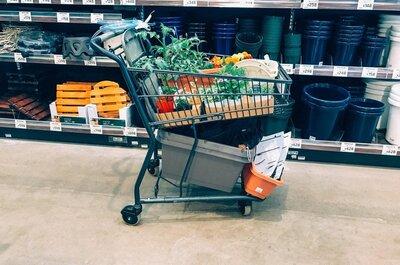 【毎日の変化に癒やされる】8000円で花と野菜のベランダ菜園をはじめました。