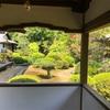随心院の新緑に癒される。京都山科 小野小町ゆかりの寺へ