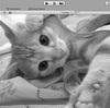 【Unity】Webカメラの画像を加工して表示する