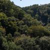 信貴山、高安山にて低山登山。恩地越えルートから高安山駅まで。