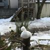 雪遊びの名残り