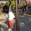 公園で、出来たこと