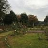 紅葉と薔薇園