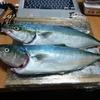 国府津でイナダを釣った時のタックル!🔥🐧🔥