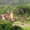 コスタリカ、アキアレス農園