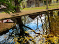 紅葉も終わりかけの北海道大学構内で写真撮影