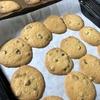 アメリカのバザーでおなじみ チョコチップクッキー