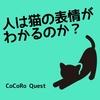 「猫の気持ちを知りたい!」猫の表情を見抜く診断テストが面白い