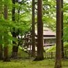 苔むす緑が美しい香雪園…