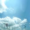 白い雲と空 緑と花たちのある午後日記!