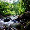 梅雨明けの犀川源流へ