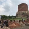 インド、仏教四大聖地ダメークストゥーパ寺院