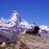 ツェルマット:ブラウヘルトから湖・シュテリゼーに向かうハイキング【スイス観光おすすめ情報】【トレッキング・登山】