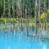 道産子が北海道の本当のブルーを紹介するよ…