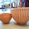 テラコッタの鉢