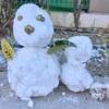 【おそとあそび】雪!雪!雪!季節を感じる遊びは刺激がいっぱい。