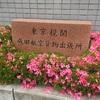 成田空港へ貨物の受取に行ってきました!